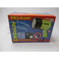 pelican_bright_light_395092699